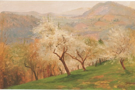 Apple Blossoms Jervis McEnteee