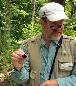 Birding, photo credit Elizabeth Schanz