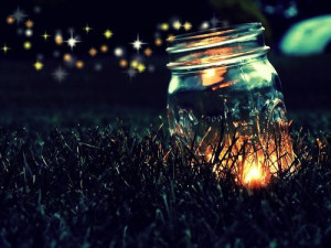 fireflies Flash Mob