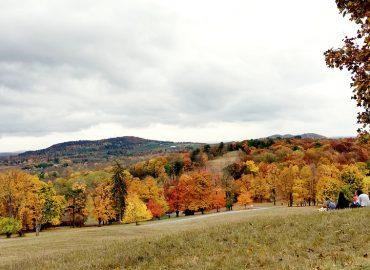 sm.autumn at olana.elizabeth schanz